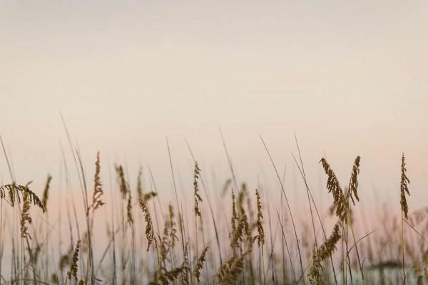 Rustic-Beach-Wedding-in-Gulf-Shores (1 of 28)