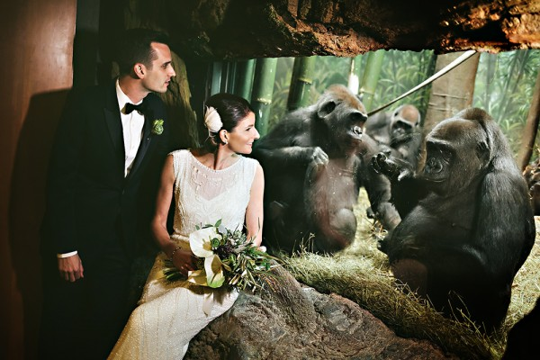 einphoto bronx zoo wedding 042