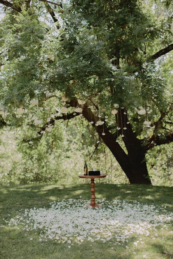 Intimate-Backyard-Wedding-in-Northern-California (10 of 28)