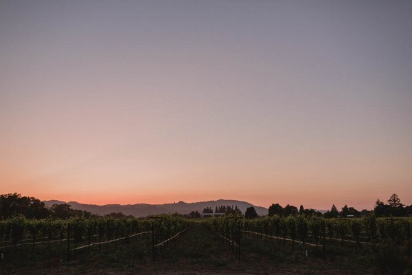 Intimate-Backyard-Wedding-in-Northern-California (27 of 28)