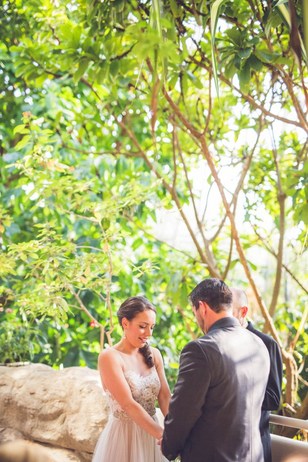 Intimate-Houston-Museum-of-Natural-Science-Wedding-Ama-Photography-and-Cinema-017