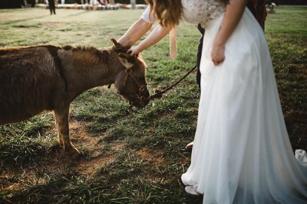 Rustic-Boho-Wedding-at-Merry-Hill-Farm (25 of 41)