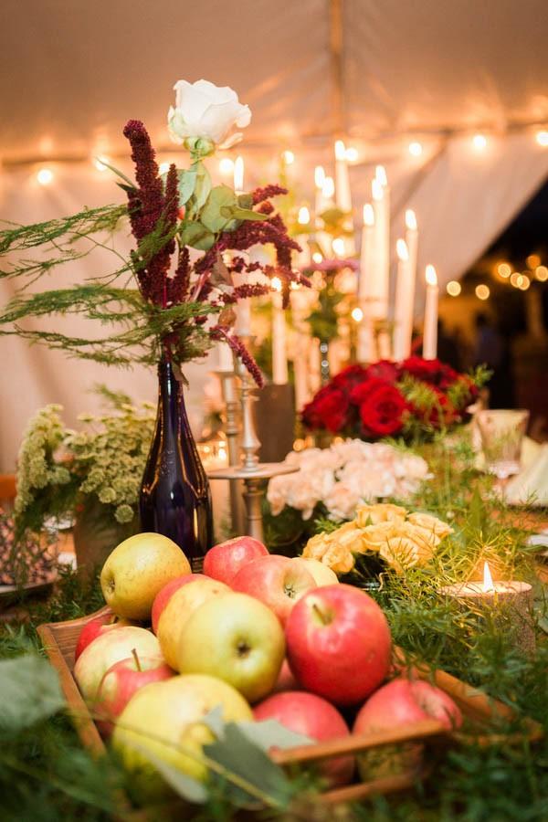 Winter-Wedding-at-Gunpowder-Falls-State-Park-Alysia-and-Jayson-19