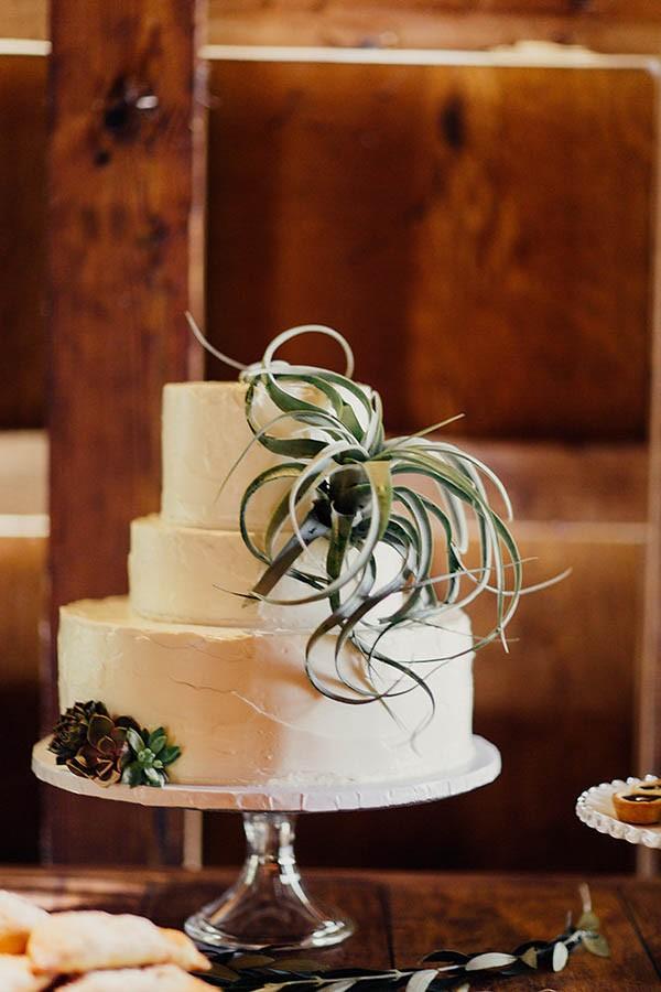 Modern-Cuyahoga-Valley-Wedding-Dark-Wood-Succulents-Addison-Jones-28