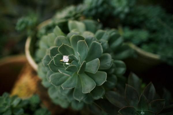 Haiku-Mill-Wedding-Maui-Anna-Kim-Photography-1
