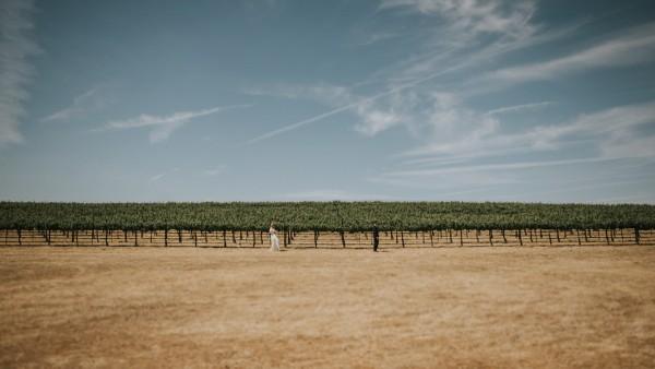 a-california-countryside-wedding-at-pomar-junction-vineyard-winery-13