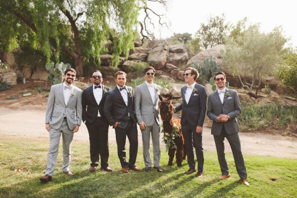 an-alpaca-almost-stole-the-spotlight-in-this-hummingbird-nest-ranch-wedding-14