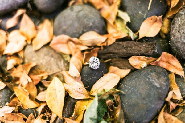 earthy-california-forest-wedding-at-saratoga-springs-36