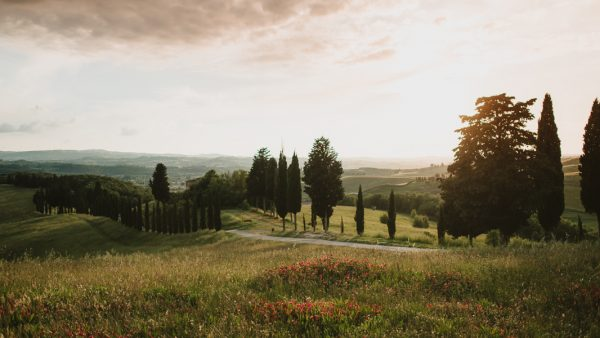 your-jaw-is-going-to-drop-when-you-see-this-gorgeous-tuscan-elopement-41