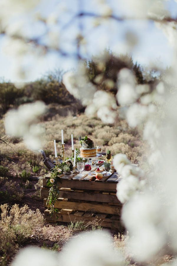 vintage-inspired-sedona-elopement-at-yavapai-point-overlooking-bell-rock-andy-roberts-photography-54