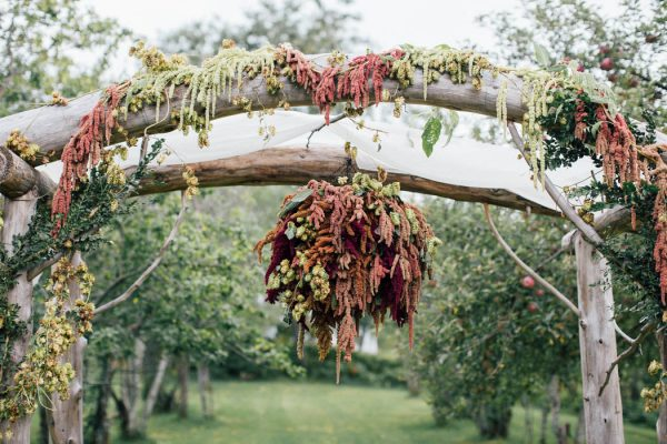 this-michigan-orchard-wedding-at-belsolda-farm-is-quintessentially-autumn-vafa-photography-29