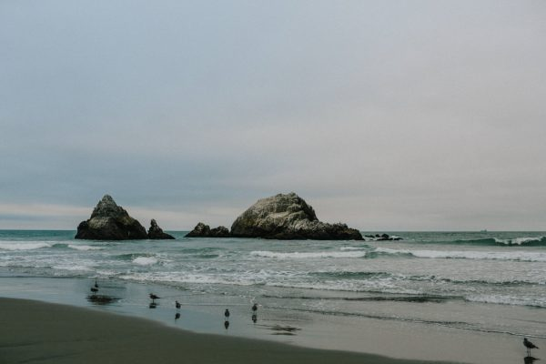 botanical-beach-anniversary-photos-at-the-sutro-baths-1
