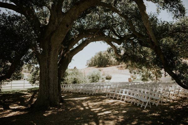 View More: http://jcguzmanphoto.pass.us/nicolejbweddings