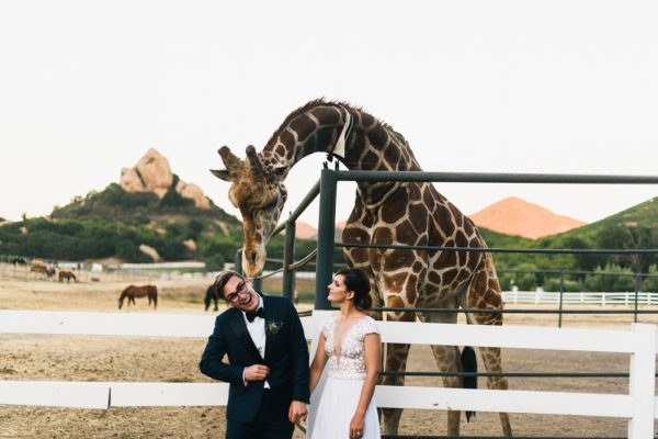 mid-century-modern-saddlerock-ranch-wedding-36