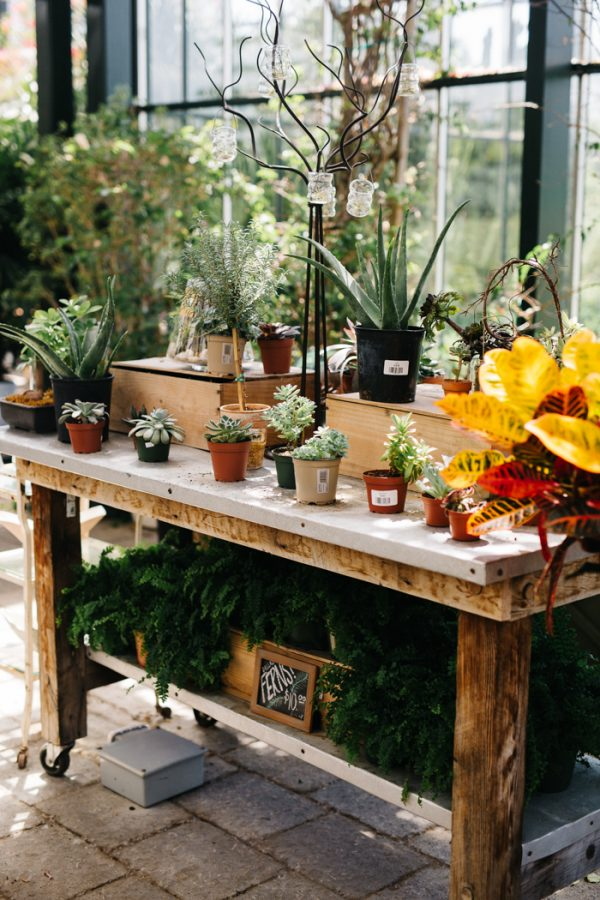 overwhelmingly-lush-michigan-wedding-at-the-planterra-conservatory-2