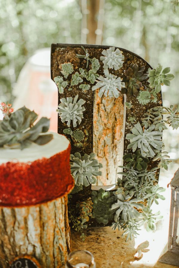 Absolutely Enchanting Southern DIY Wedding at Aurora Acres Stephanie Sorenson Photography-18