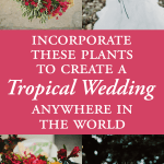 Incorporate These Plants to Create a Tropical Wedding Anywhere in the World