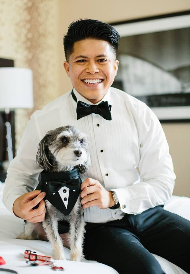 Dog Of Honour Dog Wedding Bow Detachable Bow Tie Check Dog Bow Tie