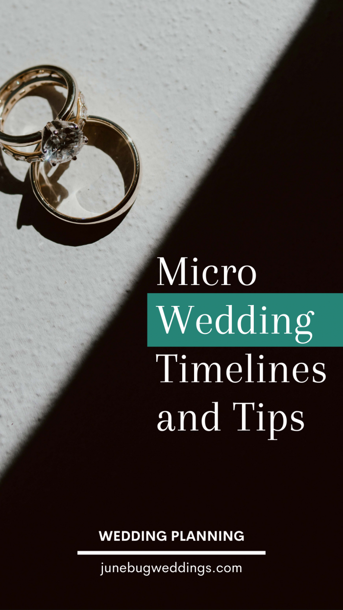 Micro Wedding Timelines and Tips Graphic